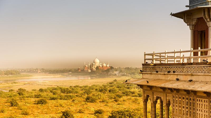 Taj Mahal Laura