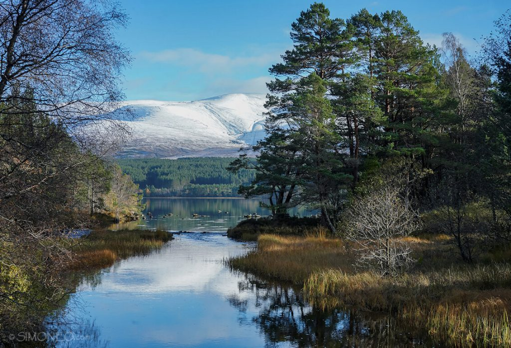 Cairngorms National Park 4