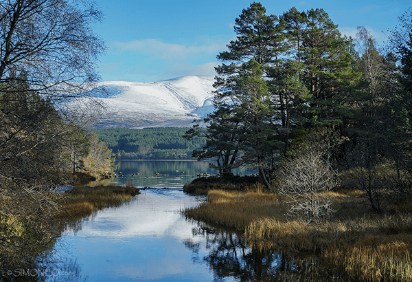 Cairngorms National Park 2
