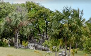 Natuur Mexico